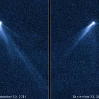 Hot on the tail: These images taken by NASA's Hubble Space Telescope two weeks apart reveal a never-before-seen set of six cometlike tails radiating from a newly discovered body, designated P/2013 P5, in the asteroid belt. | AFP-JIJI