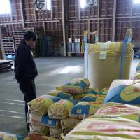 Deceptive rice price reforms viewed as too late for industry