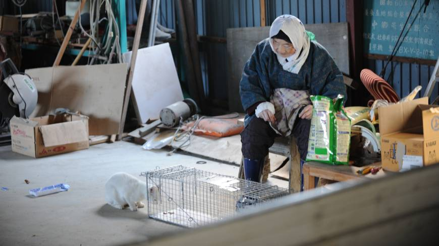 Left behind: An old lady who refused to evacuate Kawauchi village after 3/11 lives with her beloved cats and many more besides.