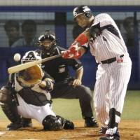 Tokyo Yakult's Wladimir Balentien  hits his 60th home run of the season against the Hanshin Tigers in September. kyodo | KYODO