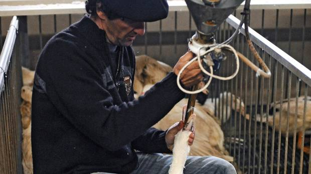 Outcry forces down foie gras reforms