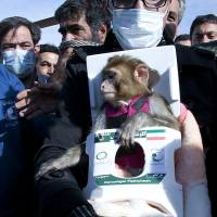 Iran sends second monkey into space, advancing rocket technology