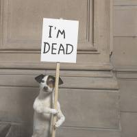 David Shrigley's 'I'm Dead' (2010) | COLLECTION HAMILTON CORPORATE FINANCE, LONDON; IMAGE COURTESY KELVINGROVE ART GALLERY AND MUSEUM; © THE ARTIST