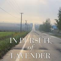 In Pursuit of Lavender