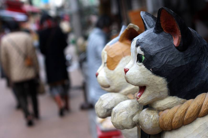 whisker's difference: Yanaka, part of a wider area of eastern Tokyo ...