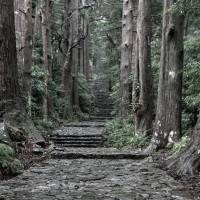 Onward and upward: A stepped section of the age-old Kumano pilgrimage route that crisscrosses the region. | ALON ADIKA
