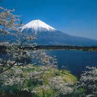 High point: Mount Fuji, seen here from Lake Tanuki, was on the list of 'hit products' because it was voted a UNESCO World Heritage Site in 2013. | ©JNTO