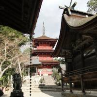Ancient hilltop shrine, venison highlight trip to Kaibara