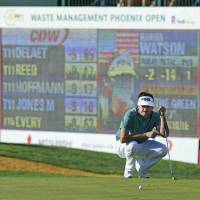 Phoenix rising: Bubba Watson lines up a putt on the 16th green at the Phoenix Open on Saturday. | AP