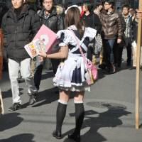 At your service: A girl in a maid costume hands outs leaflets in Tokyo's Akihabara district on Jan. 12. | YOSHIAKI MIURA