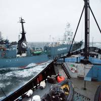 Ahoy!: The Yushin Maru whaling ship is shown on a collision course with the Sea Shepherd vessel Steve Irwin in waters off Antarctica in this handout image. | AFP/ELIZA MUIRHEAD/SEA SHEPHERD AUSTRALIA