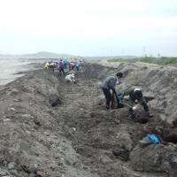 Volunteers from Nine overturn a beach near Minamisoma, Fukushima Prefecture. | COURTESY OF NINE
