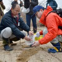 Shiga prefectural officials collect soil samples near a riverbank in Takashima on Feb. 28. Dozens of bags of cesium-contaminated wooden chips were found dumped there last year. | KYODO