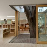 Tree of learning: The inside of Fuji Kindergarten remains open to the outdoors for two-thirds of the year and incorporates three large zelkova trees in its design. | © TEZUKA ARCHITECTS