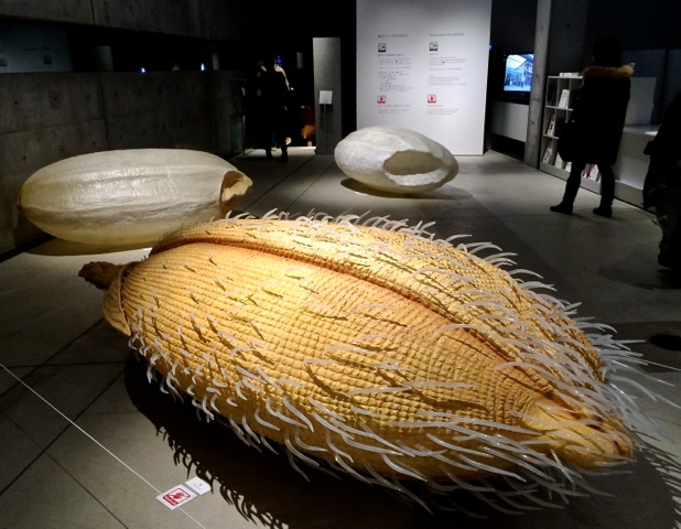 There is a giant serving of culture in one bowl of rice
