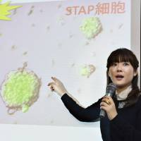 Selling a story: Haruka Obakata explains her research at a news conference regarding STAP cells in Kobe in January. | KYODO