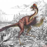 'Chicken from hell' dinosaur gets a real name