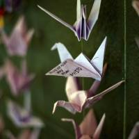 Origami is seen hanging with prayers and well-wishes for the passengers of missing Malaysia Airlines Flight MH370 at a shopping mall in Bangsar on Sunday. | AFP-JIJI