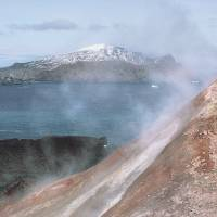 Volcanoes helped species survive ice ages: study