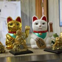Maneki neko (beckoning cats) sit on a table at Hawaiian-owned shop Da Fish House, Kawaihae, Hawaii Island. | HILLEL WRIGHT
