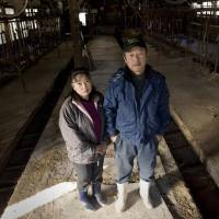 Photos from Iitate farmer Kenichi Hasegawa's book, 'Genpatsu ni Furusato wo Ubawarete' ('Fukushima's Stolen Lives'), show Hasegawa standing with his wife in a vacant cowshed during a visit to the village in December 2011.  | TAKASHI MORIZUMI