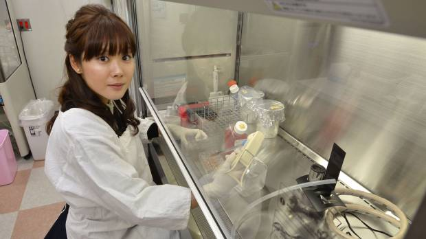 'STAPgate' shows Japan must get back to basics in science