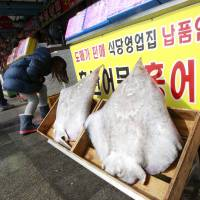 Asia's worst-smelling fish a South Korean delicacy
