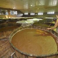Soy boy: Kazuhiko Morita stirs a giant vat of moromi at Yamaki Jozo, a plant in Saitama that produces soy sauce, tofu, miso and more using natural methods.  | KENJI MIURA