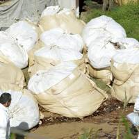 Bags containing culled chickens are gathered at a farm in Taragi, Kumamoto Prefecture, Monday morning. | KYODO