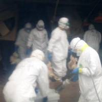 Suspected outbreak of H5-type bird flu discovered at two Kumamoto farms