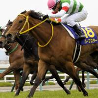 Harp Star makes remarkable run on homestretch for Oka-sho triumph