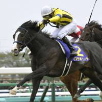 This is where I long to be: Isla Bonita comes home to win the Satsuki-sho at Nakayama Racecourse on Sunday. | KYODO