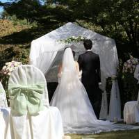 Tranquil garden wedding; enjoying the good life in Ginza; exclusive dining at The Shangri-La
