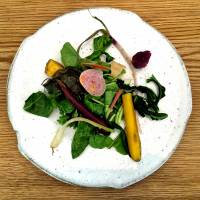 Salad plate (veggies from Eco-Farm Asano) | ROBBIE SWINNERTON