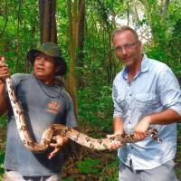 Snakes alive!: A tourist and his guide hold a boa constrictor in the Amazon jungle in Brazil, about 160 km from Manaus. | AP