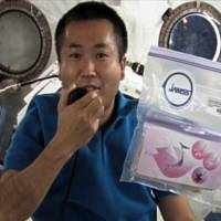 Astronaut Koichi Wakata holds a pack of cherry seeds in the International Space Station in this JAXA picture taken on April 13, 2009. | AFP-JIJI/JAXA