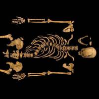 King Richard III maligned as hunchback by Shakespeare, scientists claim