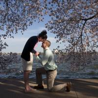 Steven Paska proposes to Jessica Deegan under the cherry trees along Washington's Tidal Basin on April 10. | AP