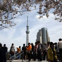People walk underneath blossoming cherry trees in Sumida Ward as Tokyo Skytree graces the background April 2. | BLOOMBERG