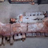 New dinosaur 'world's biggest'