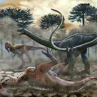 The South American dinosaur Leinkupal laticauda uses its whiplike tail to fend off predators in this illustration provided by Jorge Antonio Gonzalez. | REUTERS