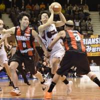 Going all out: Brave Thunders guard Naoto Tsuji (center) is defended by the Trians' Michael Parker (right) and Toshihiro Nakatsuka during Game 1 of the NBL Finals on Wednesday. The Brave Thunders won 69-61. | KYODO