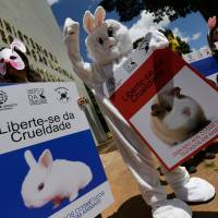 Testing time: Activist protest outside the headquarters of Brazil's Ministry of Science in March. The posters read in Portuguese 'Free yourself of Cruelty.' Animal activists handed tens of thousands of signatures to the Minister of Science calling for a ban on animal testing for cosmetics; the state of Sao Paulo already has such a ban but Japan has yet to take such a step. | AP