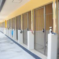 Dogs' digs: ARK's new kennels at Sasayama are well-ventilated and designed to be easy to clean so healthy, hygienic conditions can be maintained. | COURTESY OF ARK