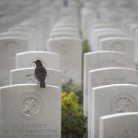 Burial grounds: Tyne Cot Cemetery in Zonnebeke, Belgium, is the largest cemetery for Commonwealth forces in the world. | AP