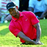 Tiger ready to play again