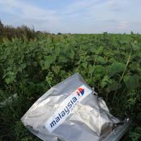 A Malaysia Airlines envelope lies in a sunflower field Saturday near the eastern Ukrainian village of Hrabove in the wake of Flight MH17's crash Thursday. | AFP