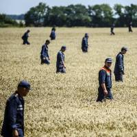 Members of the Ukrainian State Emergency Service search for bodies in a field near the crash site of Malaysia Airlines Flight MH17, near the village of Hrabove, in the Donetsk region, on July 26. | AFP-JIJI