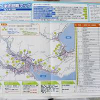 Tsunami-hit town releases new disaster prep map
