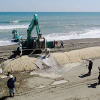 Stemming the tide: Researchers reinforce Miyazaki Beach against erosion with giant concrete blocks in March 2012. | KYODO